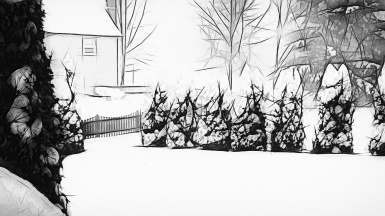 #45 Snowy Day