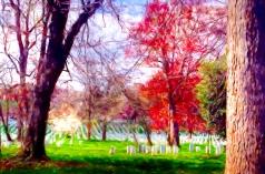 141 Arlington Cemetery Impasto